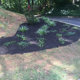 front by driveway- landscaping